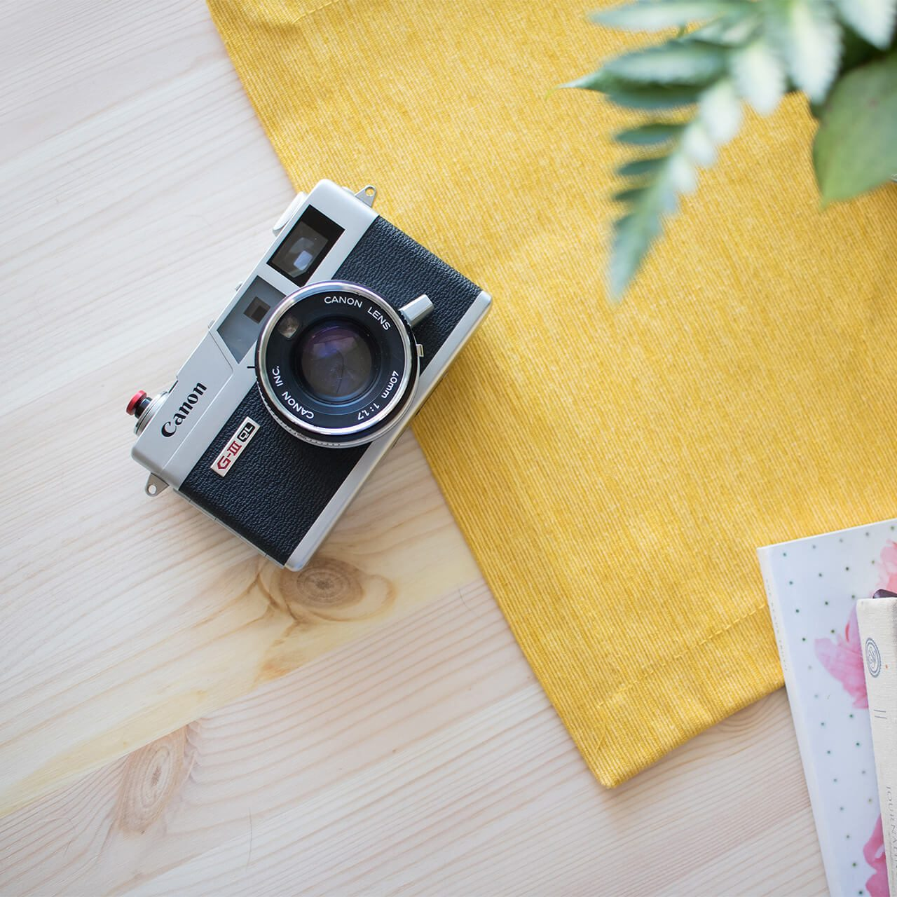 Cannon: The Best Camera You Can Buy Today For Great Price