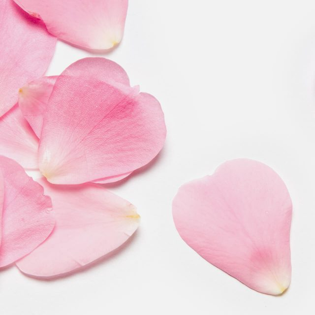 How To: Make Your Rose Scent Perfume